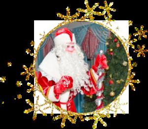 Дед мороз на Новый год для детей в Кирове